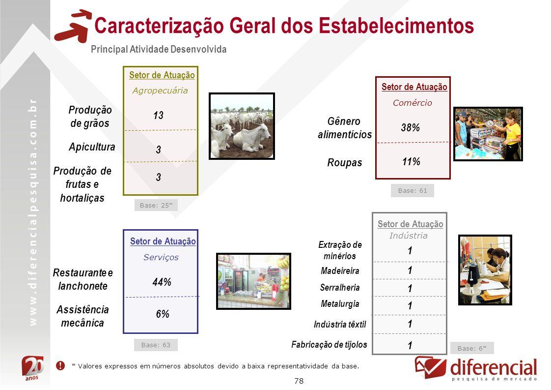 78 Caracterização Geral dos Estabelecimentos Principal Atividade Desenvolvida 44% Serviços Setor de Atuação Restaurante e lanchonete Assistência mecân