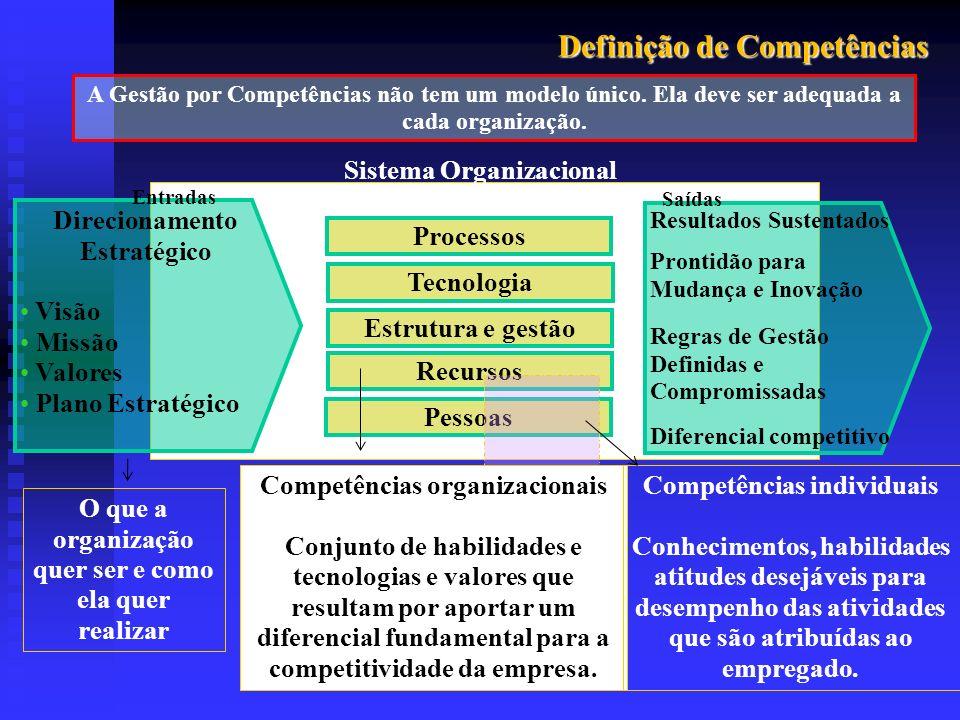 Definição de Competências Processos Sistema Organizacional Tecnologia Estrutura e gestão Recursos Pessoas Direcionamento Estratégico Visão Missão Valo