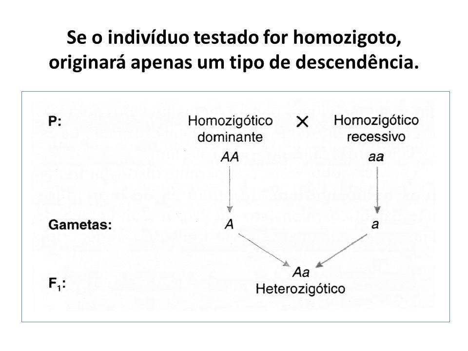 Se o indivíduo testado for homozigoto, originará apenas um tipo de descendência.