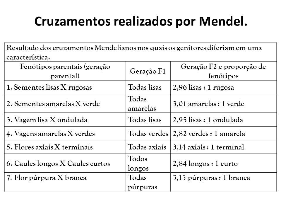 Resultado dos cruzamentos Mendelianos nos quais os genitores diferiam em uma característica. Fenótipos parentais (geração parental) Geração F1 Geração