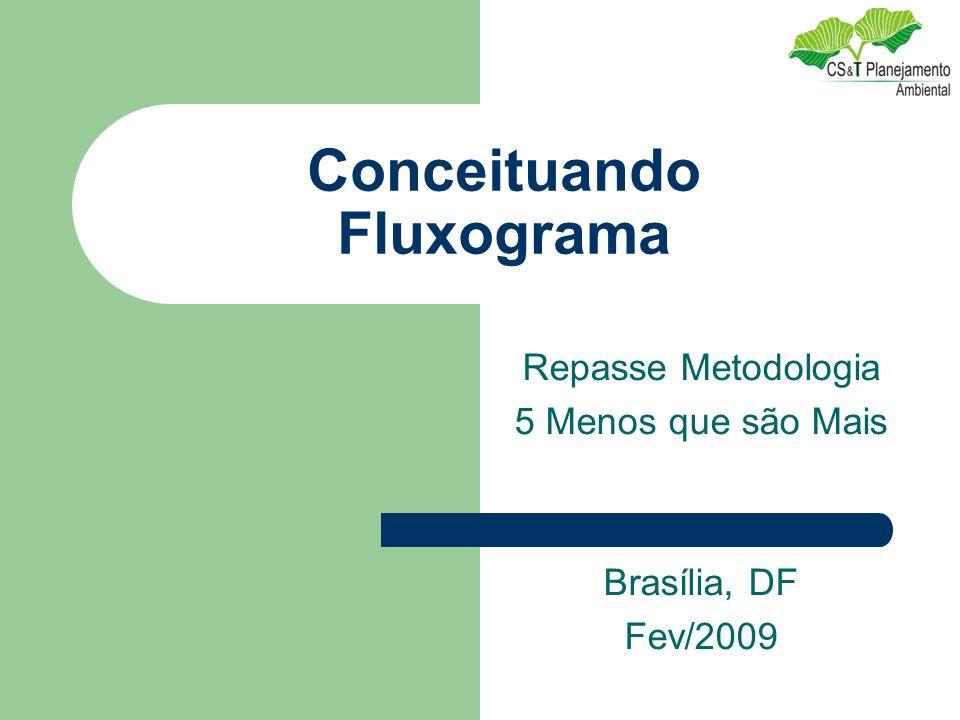Conceituando Fluxograma Repasse Metodologia 5 Menos que são Mais Brasília, DF Fev/2009