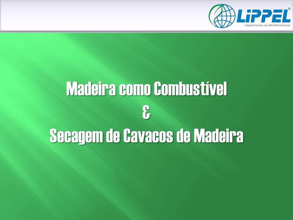 Madeira como Combustível & Secagem de Cavacos de Madeira