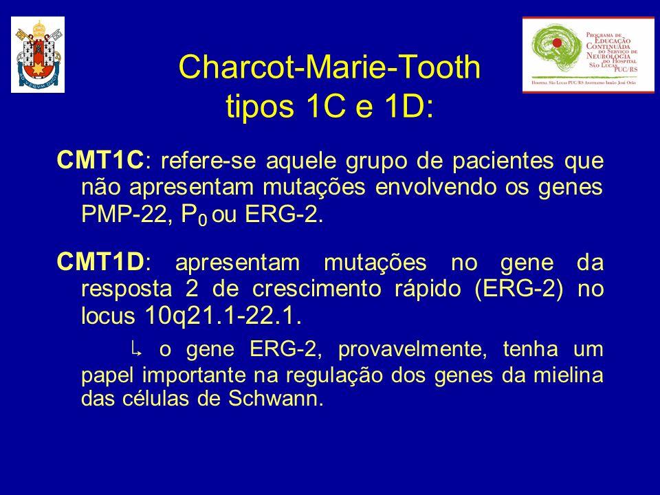 CMT1C : refere-se aquele grupo de pacientes que não apresentam mutações envolvendo os genes PMP-22, P 0 ou ERG-2. CMT1D : apresentam mutações no gene
