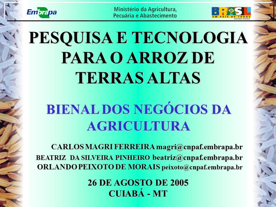 BIENAL DOS NEGÓCIOS DA AGRICULTURA PESQUISA E TECNOLOGIA PARA O ARROZ DE TERRAS ALTAS 26 DE AGOSTO DE 2005 CUIABÁ - MT CARLOS MAGRI FERREIRA magri@cnp