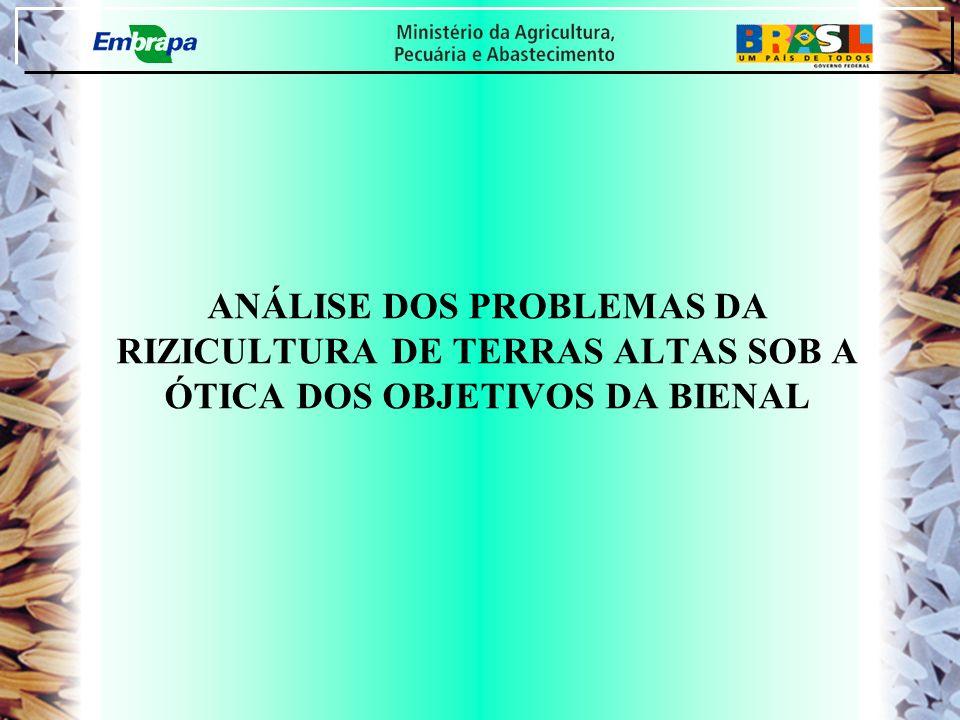 ANÁLISE DOS PROBLEMAS DA RIZICULTURA DE TERRAS ALTAS SOB A ÓTICA DOS OBJETIVOS DA BIENAL