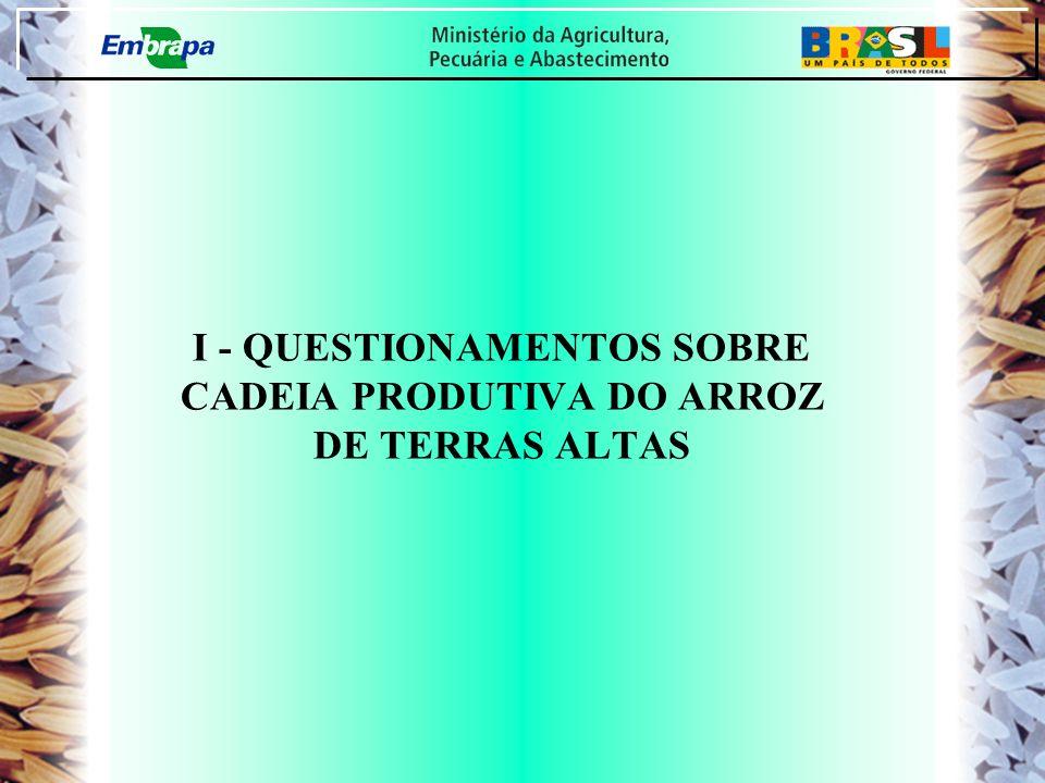 I - QUESTIONAMENTOS SOBRE CADEIA PRODUTIVA DO ARROZ DE TERRAS ALTAS