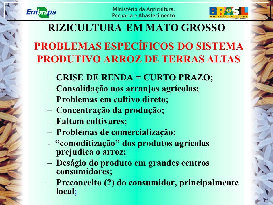 RIZICULTURA EM MATO GROSSO –CRISE DE RENDA = CURTO PRAZO; –Consolidação nos arranjos agrícolas; –Problemas em cultivo direto; –Concentração da produçã