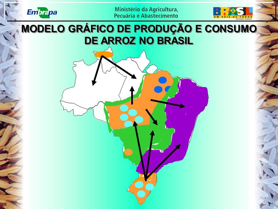 PA PI CE RN PB PE RO -1,45 MODELO GRÁFICO DE PRODUÇÃO E CONSUMO DE ARROZ NO BRASIL MODELO GRÁFICO DE PRODUÇÃO E CONSUMO DE ARROZ NO BRASIL