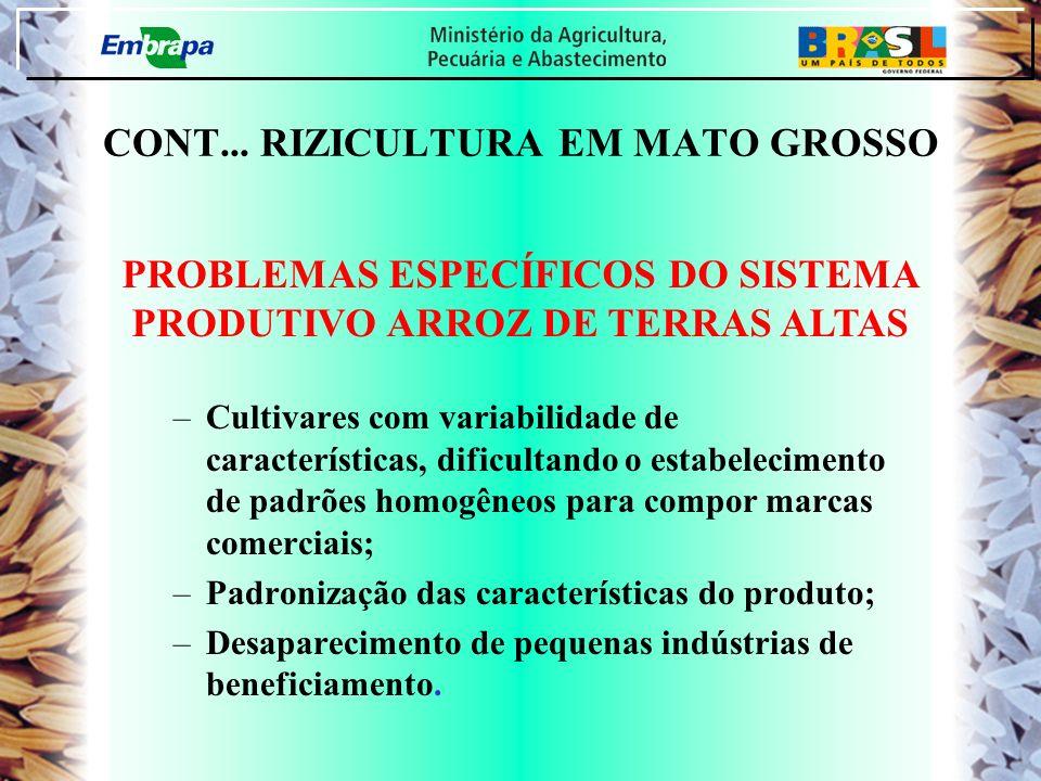 CONT... RIZICULTURA EM MATO GROSSO –Cultivares com variabilidade de características, dificultando o estabelecimento de padrões homogêneos para compor