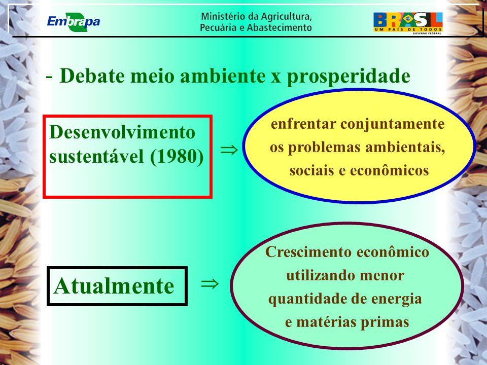 - Debate meio ambiente x prosperidade Atualmente Desenvolvimento sustentável (1980) enfrentar conjuntamente os problemas ambientais, sociais e econômi