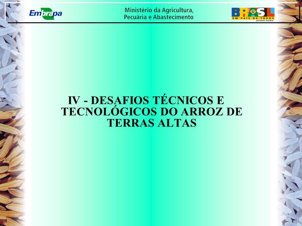 IV - DESAFIOS TÉCNICOS E TECNOLÓGICOS DO ARROZ DE TERRAS ALTAS