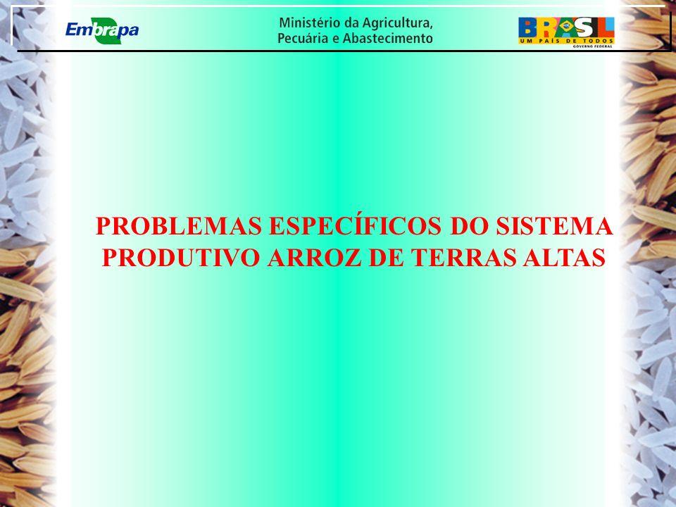 PROBLEMAS ESPECÍFICOS DO SISTEMA PRODUTIVO ARROZ DE TERRAS ALTAS