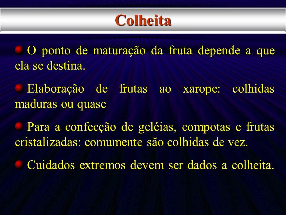 O ponto de maturação da fruta depende a que ela se destina. O ponto de maturação da fruta depende a que ela se destina. Elaboração de frutas ao xarope