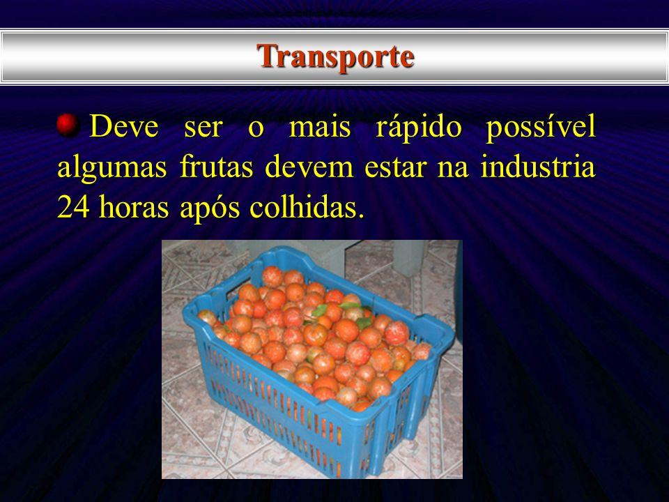 Transporte Deve ser o mais rápido possível algumas frutas devem estar na industria 24 horas após colhidas. Deve ser o mais rápido possível algumas fru