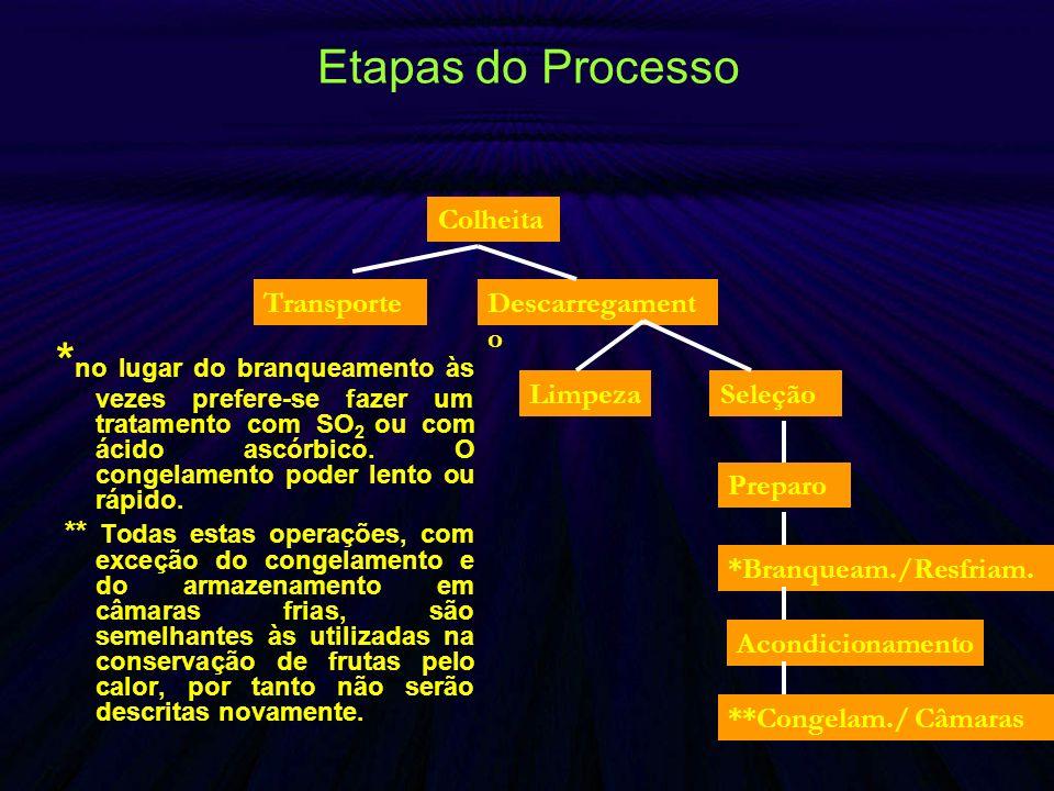 Etapas do Processo * no lugar do branqueamento às vezes prefere-se fazer um tratamento com SO 2 ou com ácido ascórbico. O congelamento poder lento ou