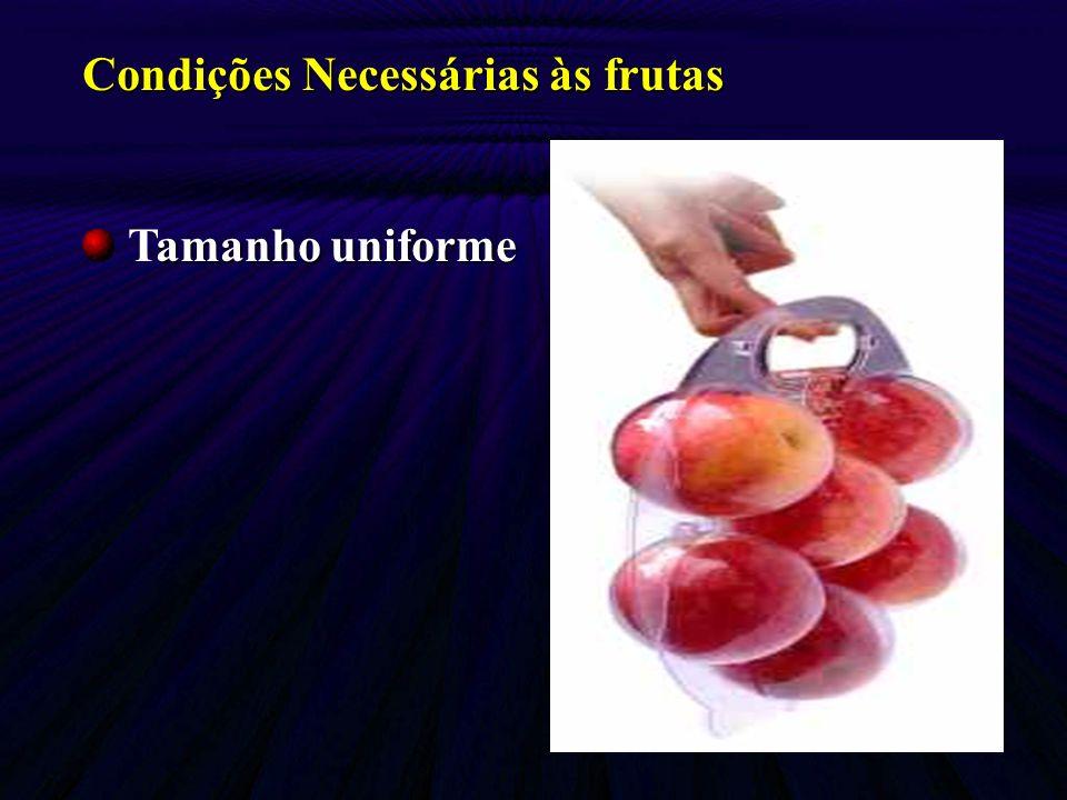 Condições Necessárias às frutas amanho uniforme Tamanho uniforme