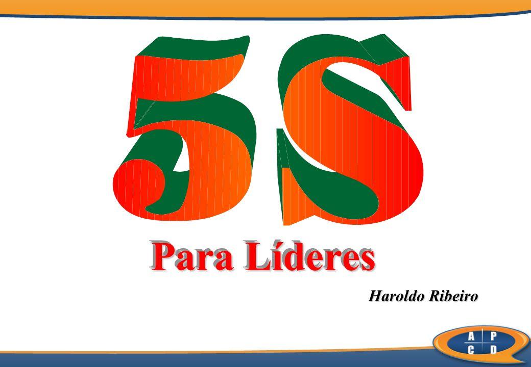 Haroldo Ribeiro Haroldo Ribeiro Para Líderes