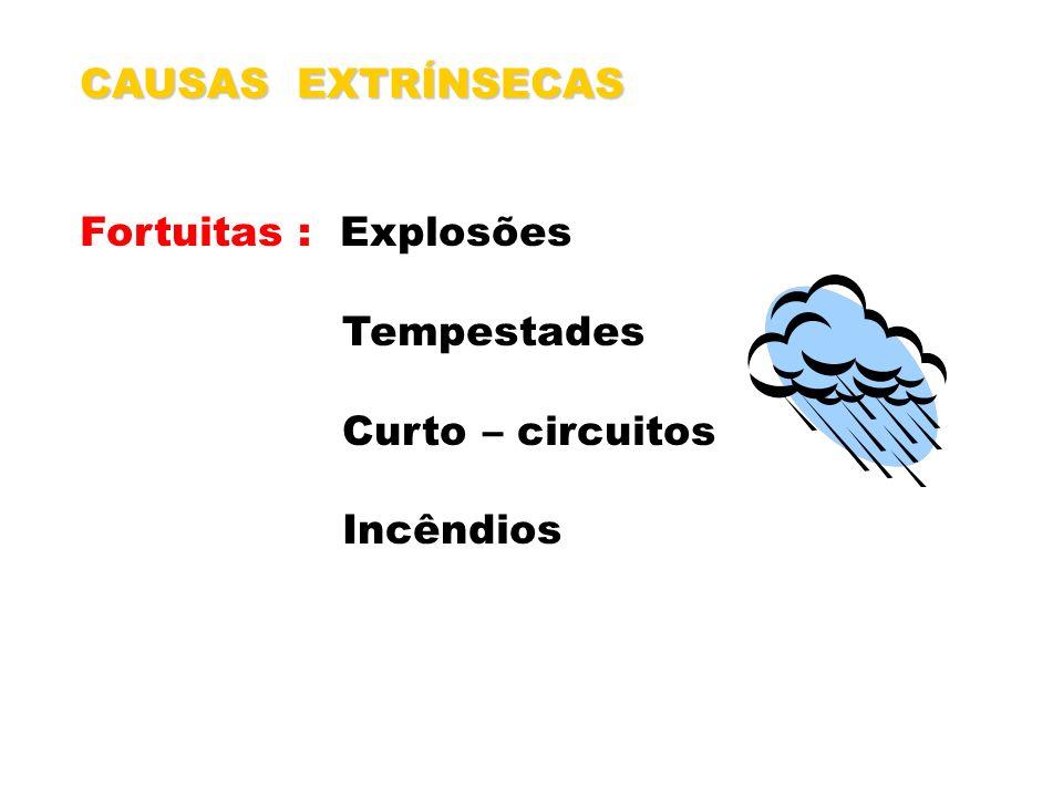 CAUSAS EXTRÍNSECAS Fortuitas : Explosões Tempestades Curto – circuitos Incêndios