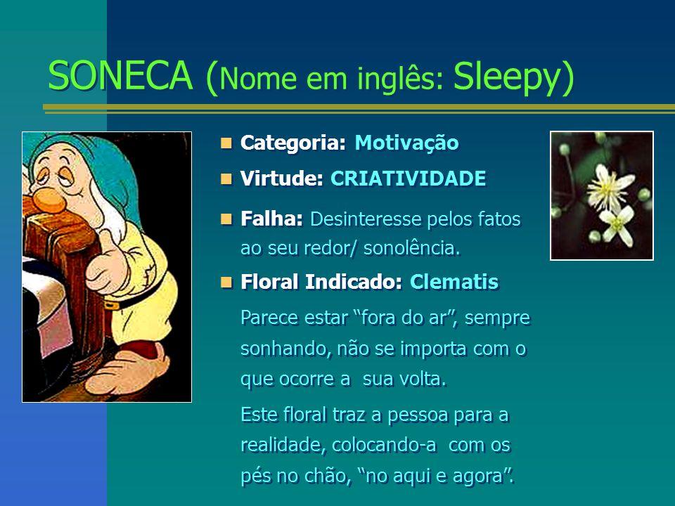 SONECA ( Nome em inglês: Sleepy) SONECA ( Nome em inglês: Sleepy) Categoria: Motivação Virtude: CRIATIVIDADE Falha: Desinteresse pelos fatos ao seu re