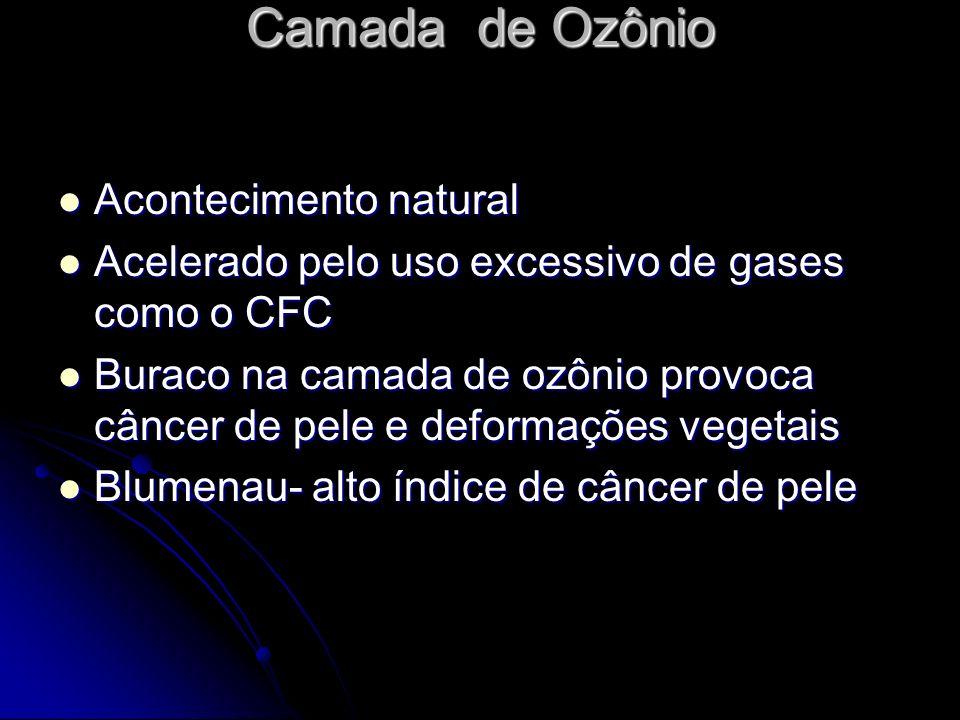 Camada de Ozônio Camada de Ozônio Acontecimento natural Acontecimento natural Acelerado pelo uso excessivo de gases como o CFC Acelerado pelo uso exce