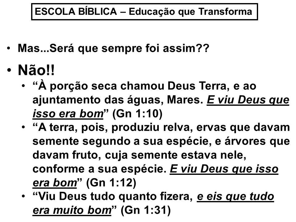 ESCOLA BÍBLICA – Educação que Transforma A criação ocorreu em Paz!!.