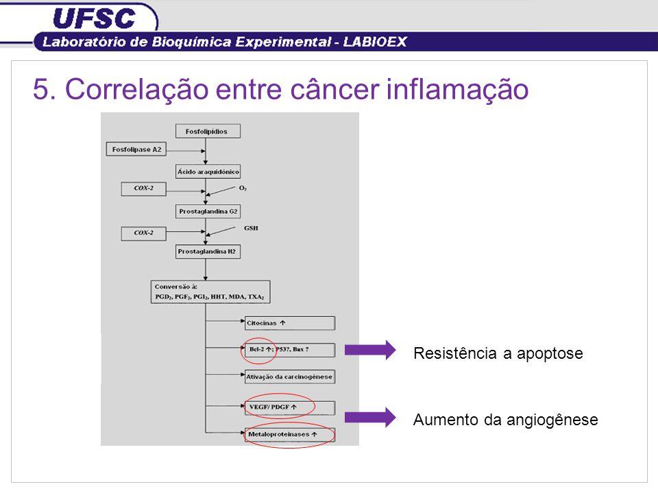 5. Correlação entre câncer inflamação Resistência a apoptose Aumento da angiogênese