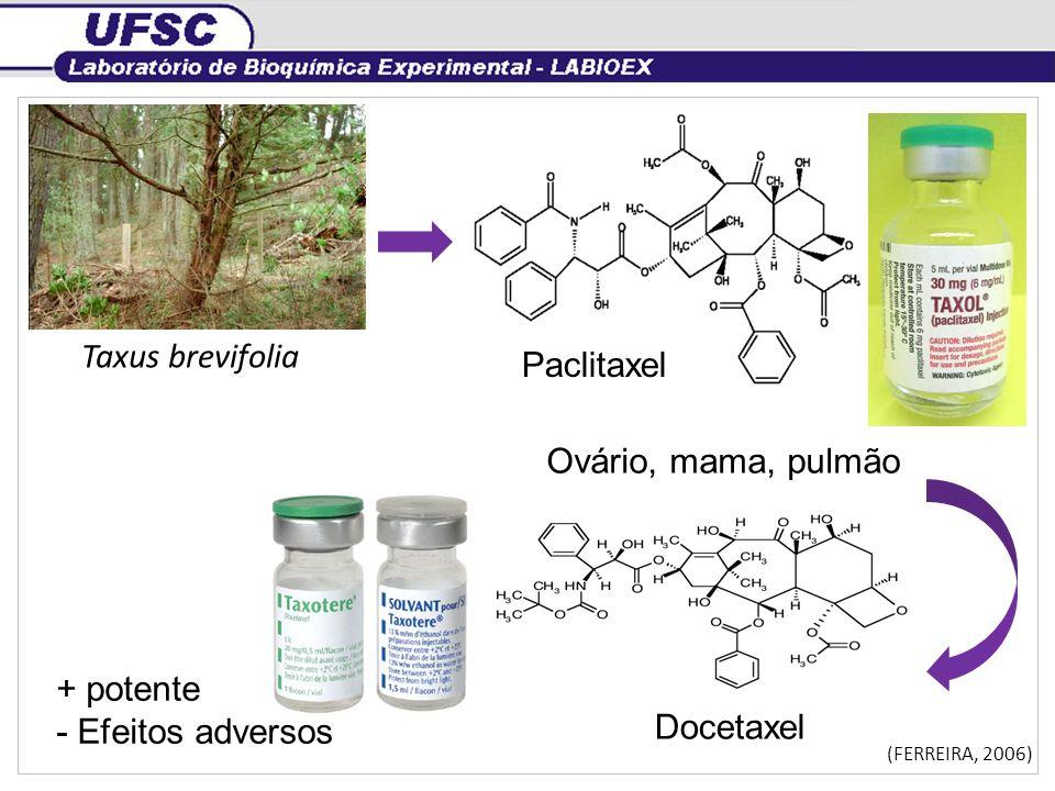 Taxus brevifolia Paclitaxel Ovário, mama, pulmão Docetaxel + potente - Efeitos adversos (FERREIRA, 2006)