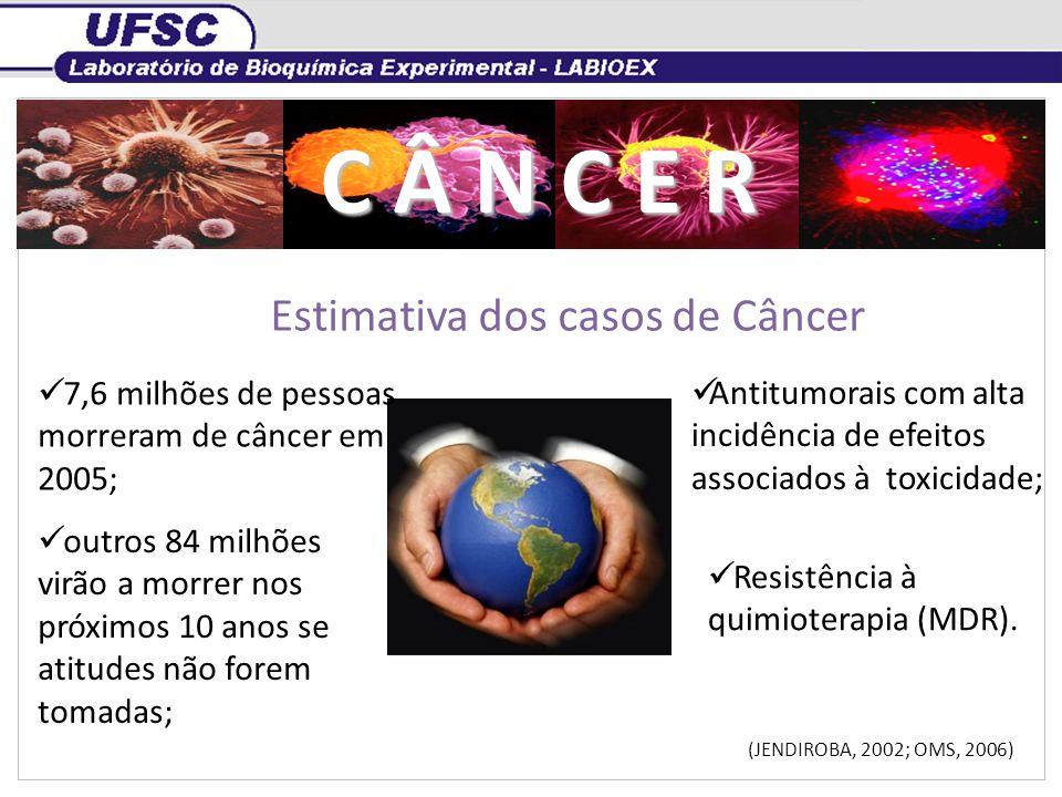 Estimativa dos casos de Câncer C Â N C E R 7,6 milhões de pessoas morreram de câncer em 2005; outros 84 milhões virão a morrer nos próximos 10 anos se