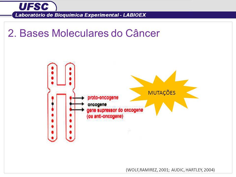 2. Bases Moleculares do Câncer (WOLF,RAMIREZ, 2001; AUDIC, HARTLEY, 2004) MUTAÇÕES