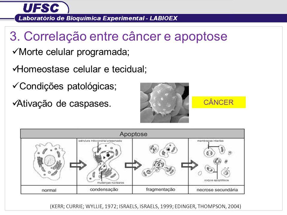 3. Correlação entre câncer e apoptose Morte celular programada; Homeostase celular e tecidual; Condições patológicas; Ativação de caspases. (KERR; CUR