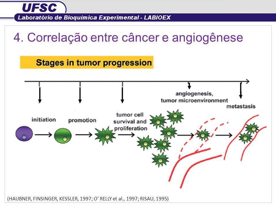 4. Correlação entre câncer e angiogênese (HAUBNER, FINSINGER, KESSLER, 1997; O RELLY et al., 1997; RISAU, 1995)