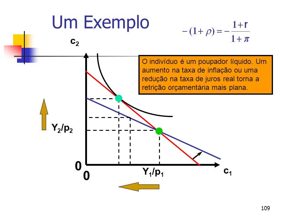 109 Um Exemplo c1c1 c2c2 Y 2 /p 2 Y 1 /p 1 0 0 O indivíduo é um poupador líquido. Um aumento na taxa de inflação ou uma redução na taxa de juros real