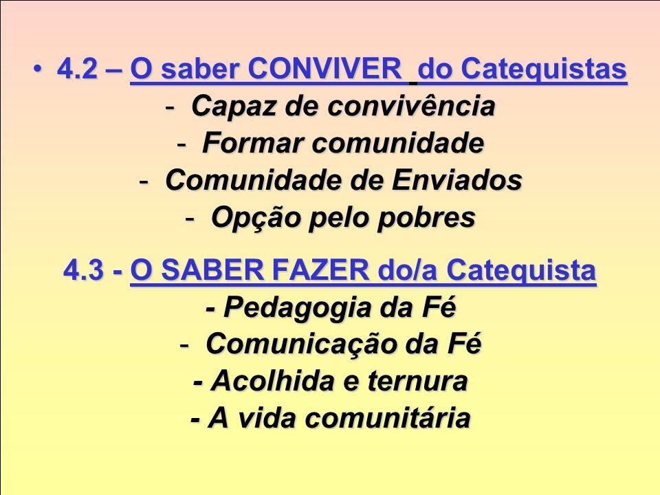 Cap. 4 O Novo Perfil do Catequistas 4.1 – O SER do Catequista4.1 – O SER do Catequista -Pessoa; -Identidade, -Afetividade -Relações -Discernimento -Es