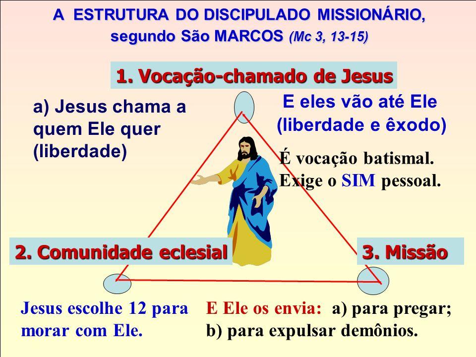 SER CRISTÃO, discípulo-missionário. 1)1) SER CRISTÃO: CRISTÃO: É O RESULTADO DE UM SIM AO CHAMADO PESSOAL PESSOAL DE JESUS PARA SEGUI-LO E ASSUMIR O Q