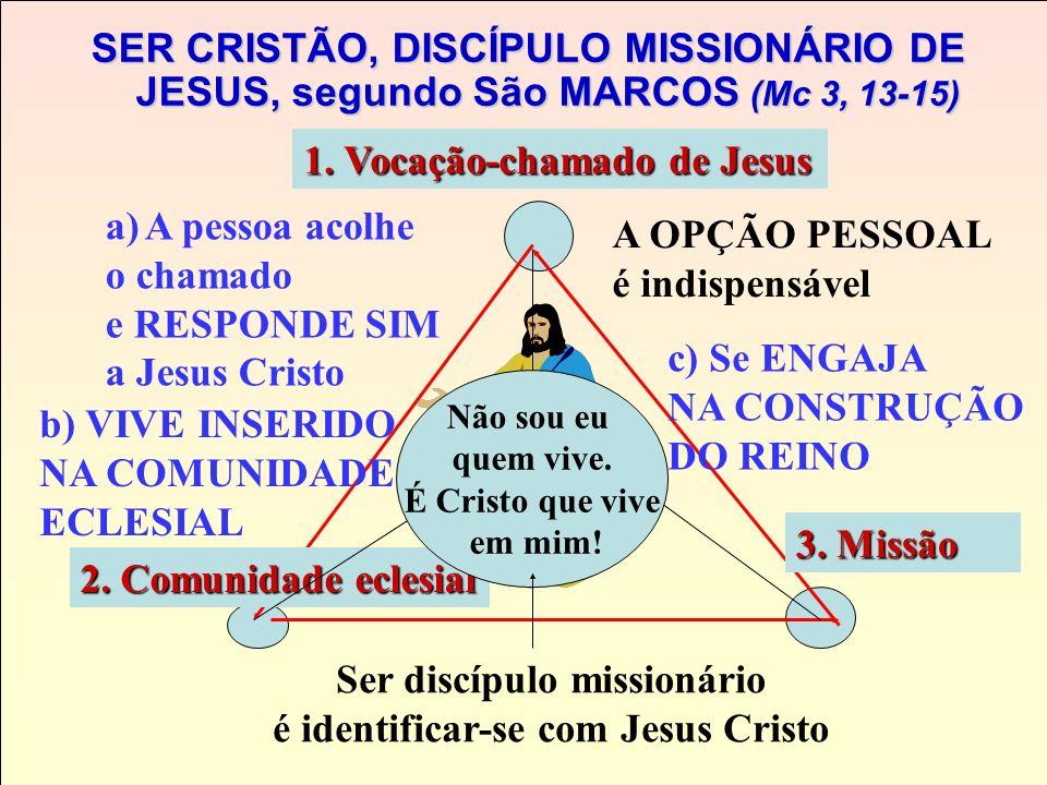 A ESTRUTURA DO DISCIPULADO MISSIONÁRIO, segundo São MARCOS (Mc 3, 13-15) E eles vão até Ele (liberdade e êxodo) Jesus escolhe 12 para morar com Ele. a