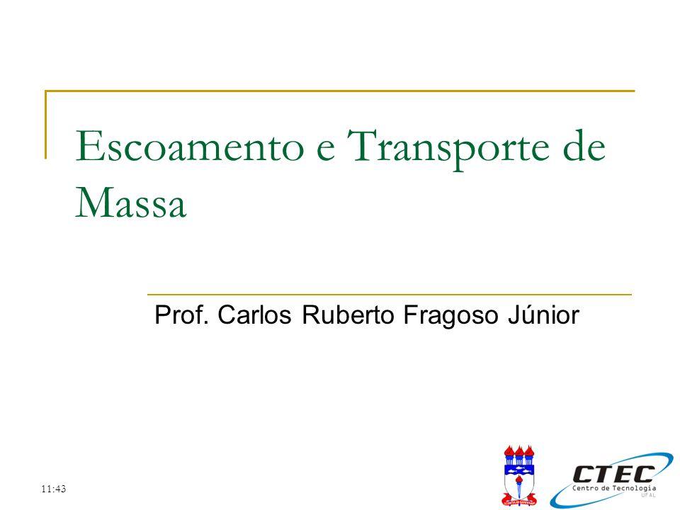 Tópicos Introdução ao Escoamento e Transporte de Massa Equações do Escoamento Simplificações das Equações do Escoamento Equação do Transporte de Massa O Termo de Perdas e Ganhos