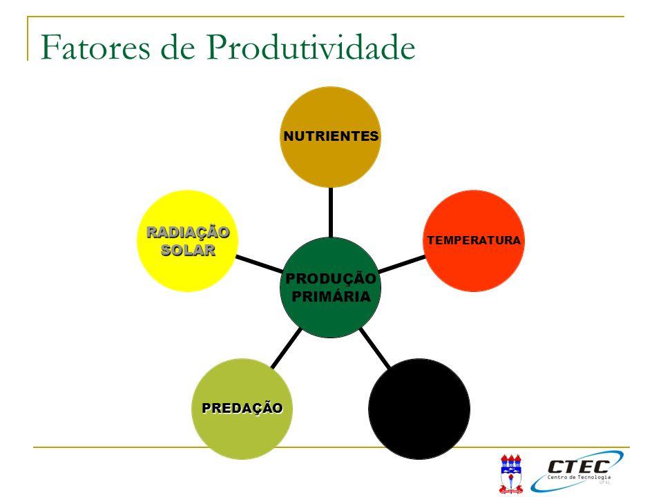PRODUÇÃO PRIMÁRIA RADIAÇÃOSOLAR TEMPERATURAPROFUNDIDADEPREDAÇÃONUTRIENTES Fatores de Produtividade