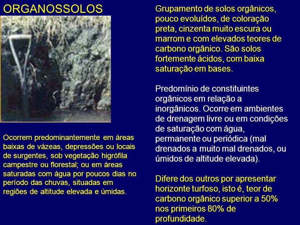 ORGANOSSOLOS Grupamento de solos orgânicos, pouco evoluídos, de coloração preta, cinzenta muito escura ou marrom e com elevados teores de carbono orgâ