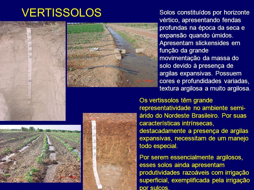 VERTISSOLOS Os vertissolos têm grande representatividade no ambiente semi- árido do Nordeste Brasileiro. Por suas características intrínsecas, destaca