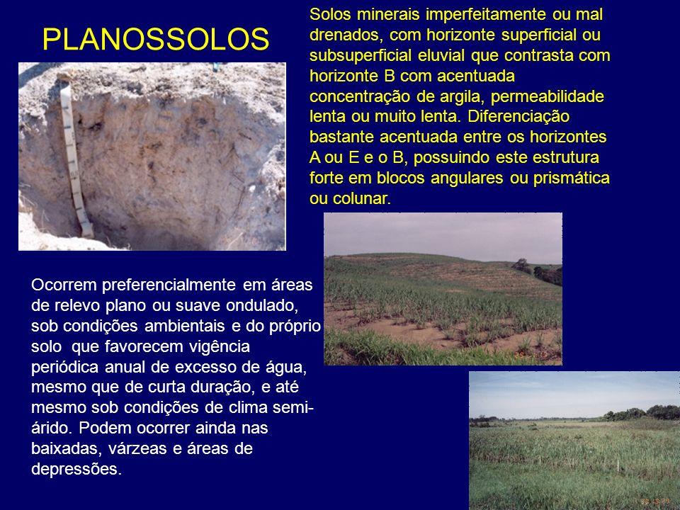 PLANOSSOLOS Solos minerais imperfeitamente ou mal drenados, com horizonte superficial ou subsuperficial eluvial que contrasta com horizonte B com acen