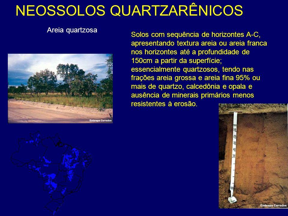 Areia quartzosa NEOSSOLOS QUARTZARÊNICOS Solos com sequência de horizontes A-C, apresentando textura areia ou areia franca nos horizontes até a profun
