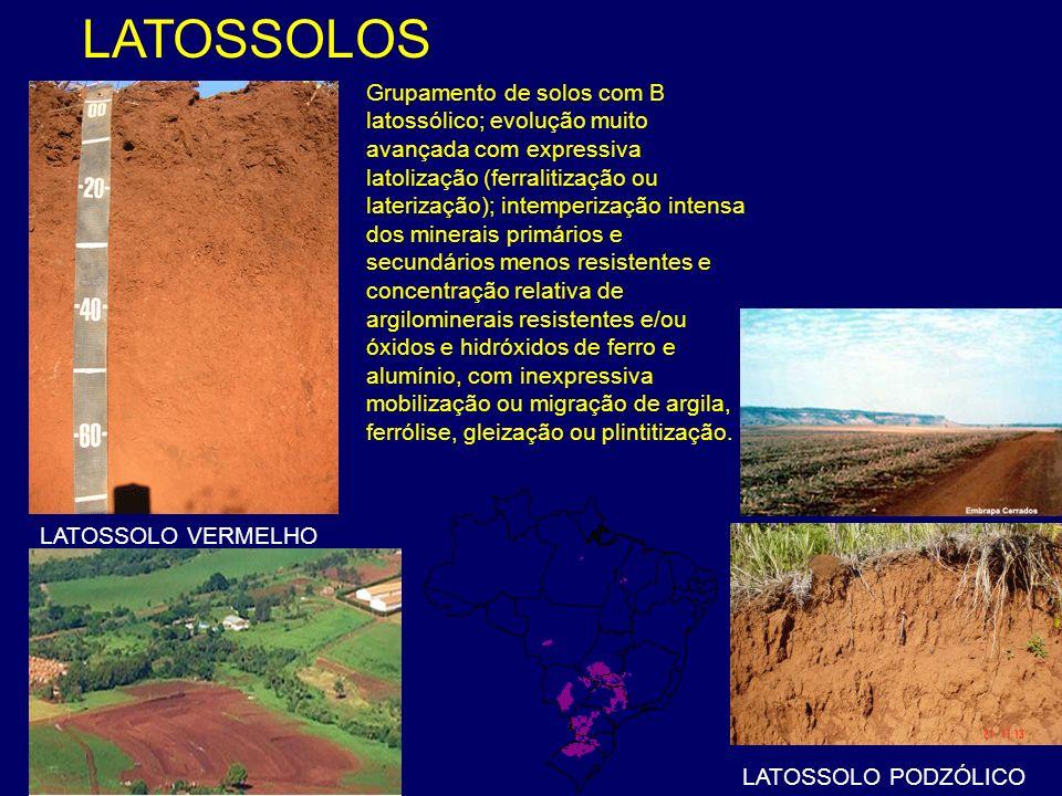 LATOSSOLOS LATOSSOLO VERMELHO LATOSSOLO PODZÓLICO Grupamento de solos com B latossólico; evolução muito avançada com expressiva latolização (ferraliti