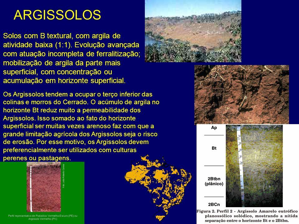 ARGISSOLOS Os Argissolos tendem a ocupar o terço inferior das colinas e morros do Cerrado. O acúmulo de argila no horizonte Bt reduz muito a permeabil