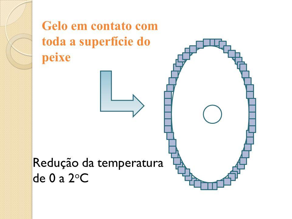 Gelo em contato com toda a superfície do peixe Redução da temperatura de 0 a 2 o C