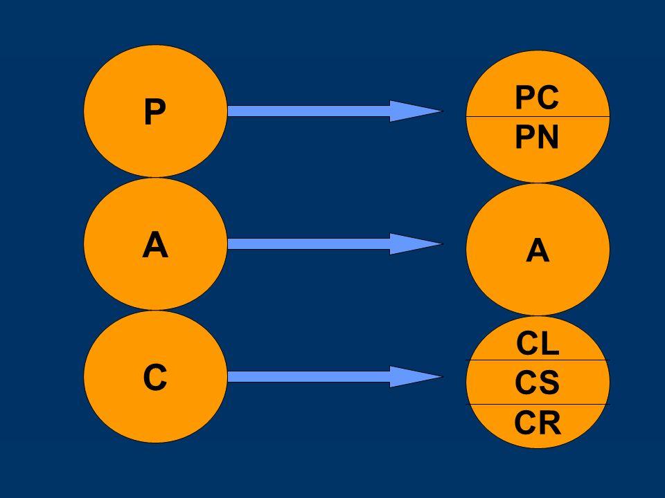 P A C CL CS CR A PC PN