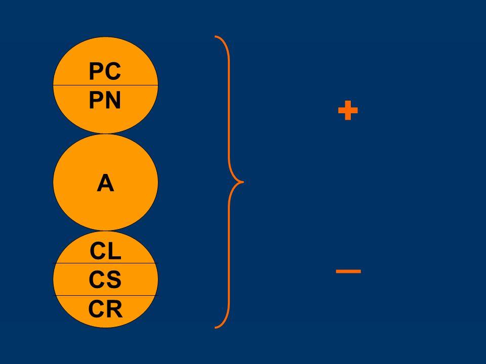 CL CS CR A PC PN +_+_