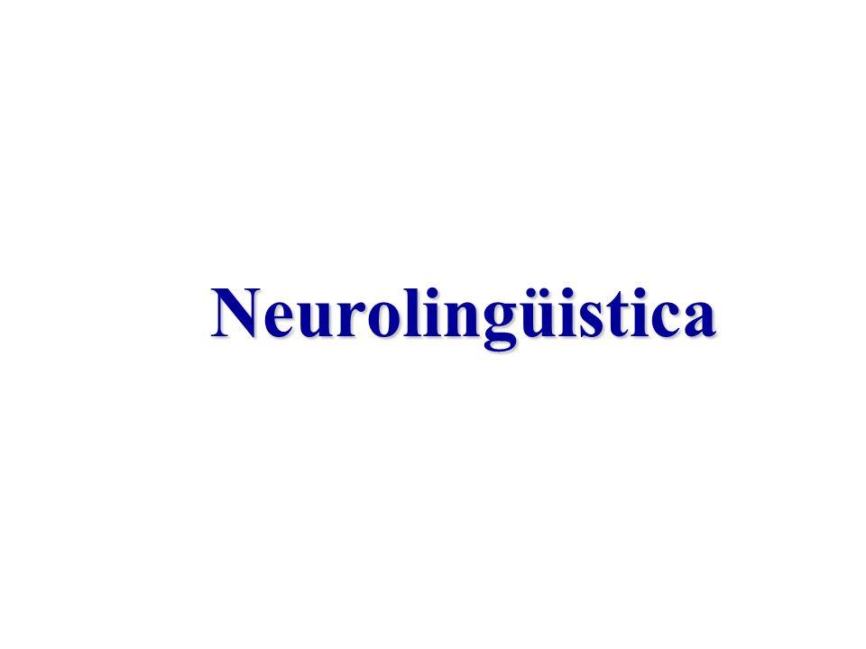 Neurolingüistica Neurolingüistica