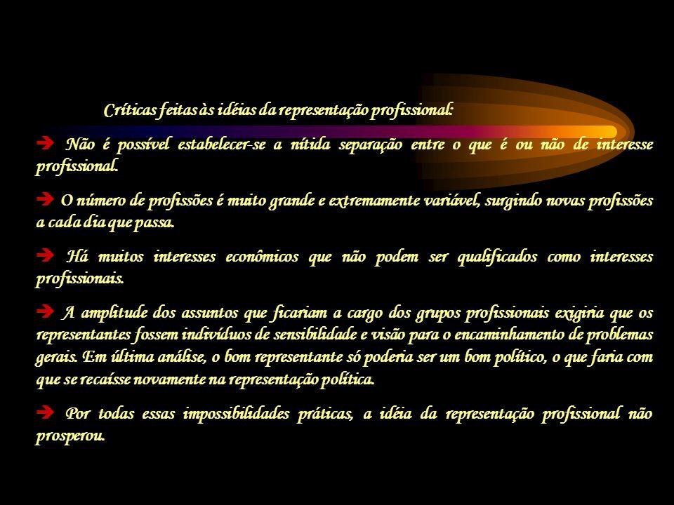 Críticas feitas às idéias da representação profissional: Não é possível estabelecer-se a nítida separação entre o que é ou não de interesse profission
