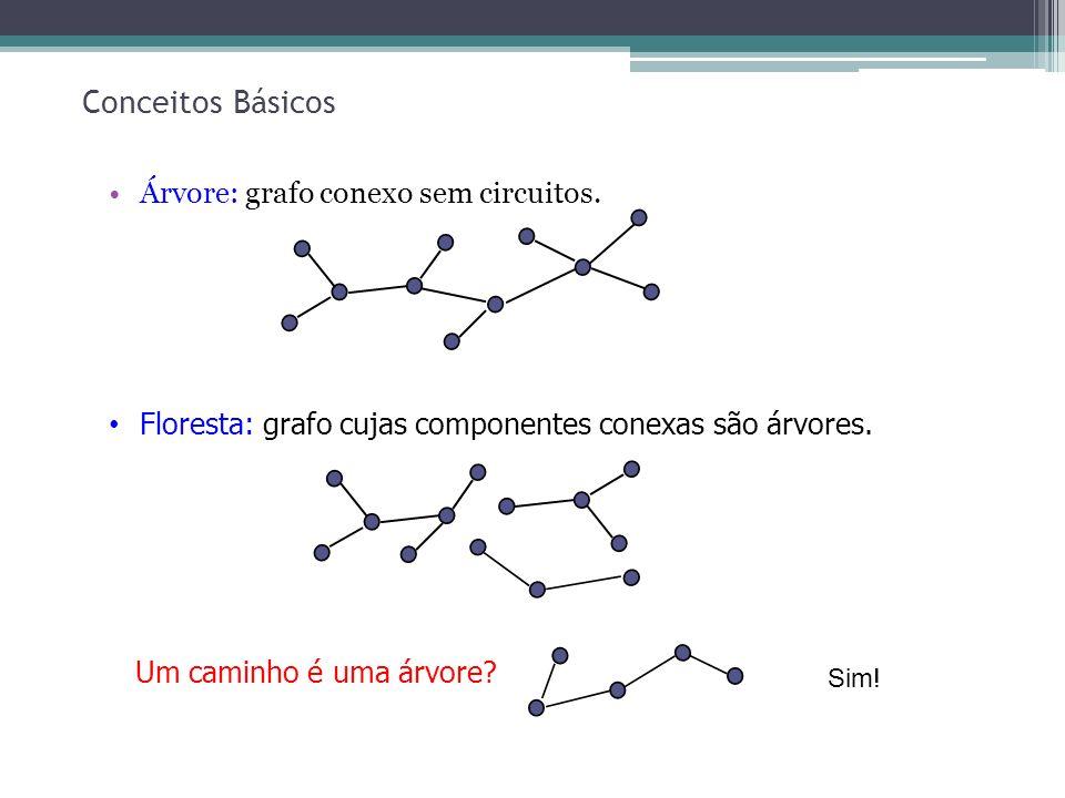 13 Conceitos Básicos Árvore: grafo conexo sem circuitos. Floresta: grafo cujas componentes conexas são árvores. Um caminho é uma árvore? Sim!