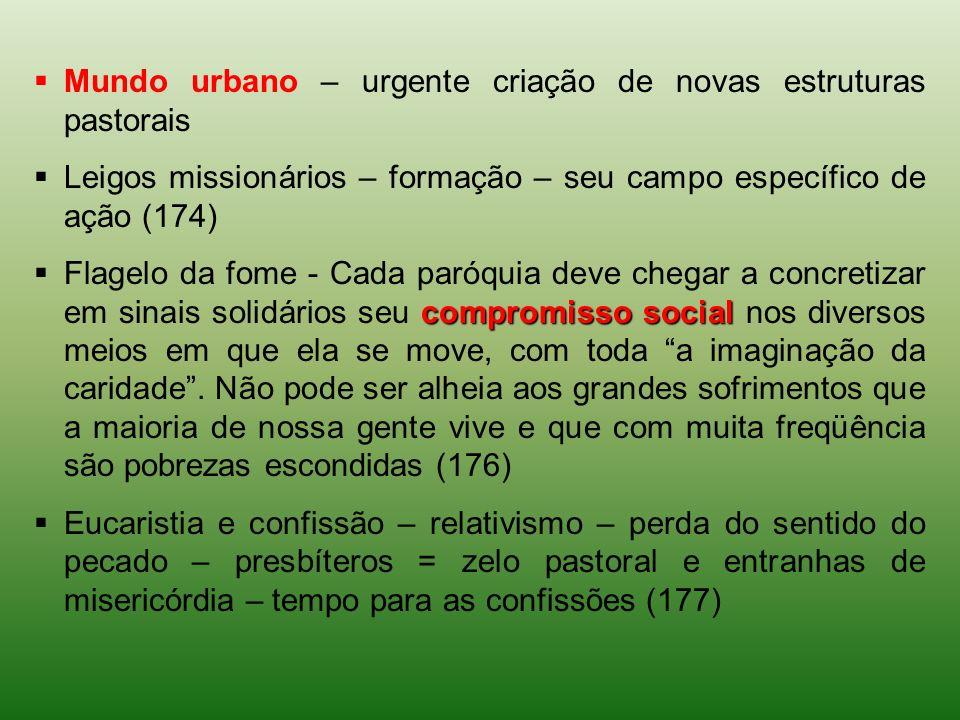 Mundo urbano – urgente criação de novas estruturas pastorais Leigos missionários – formação – seu campo específico de ação (174) compromisso social Fl
